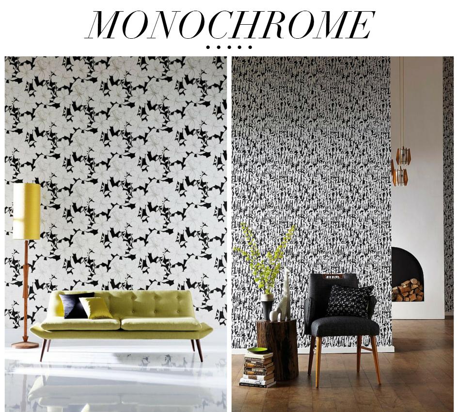 monocrome 1